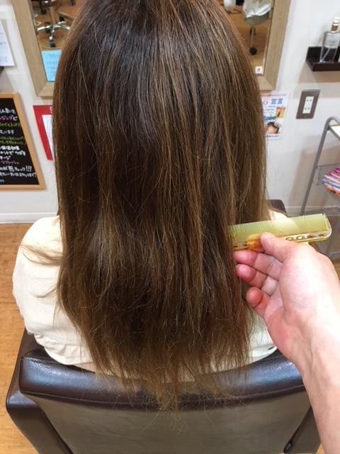 夏の美髪の色チャージ